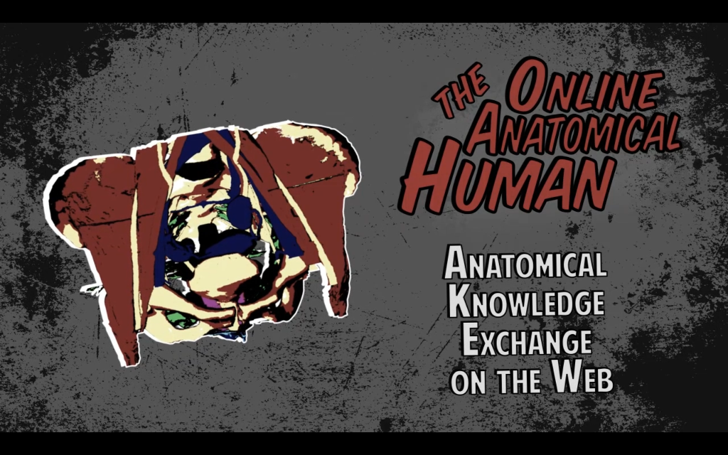 The Online Anatomical Human